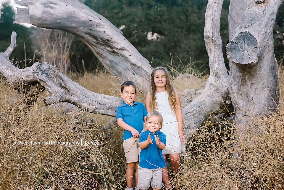 escondido family photographer escondido family pictures siblings by big log
