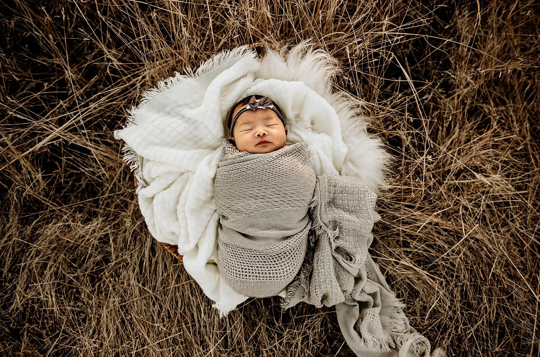 outdoor family newborn pictures baby girl in basket