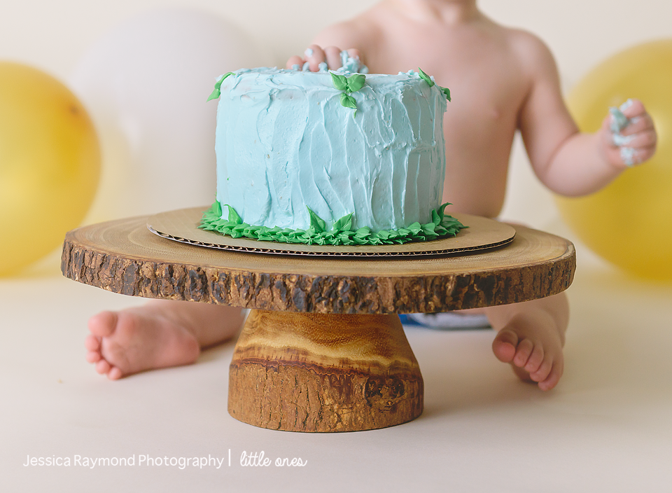 one year old portraits cake smash birthday session carlsbad california close up of blue cake on wood stand